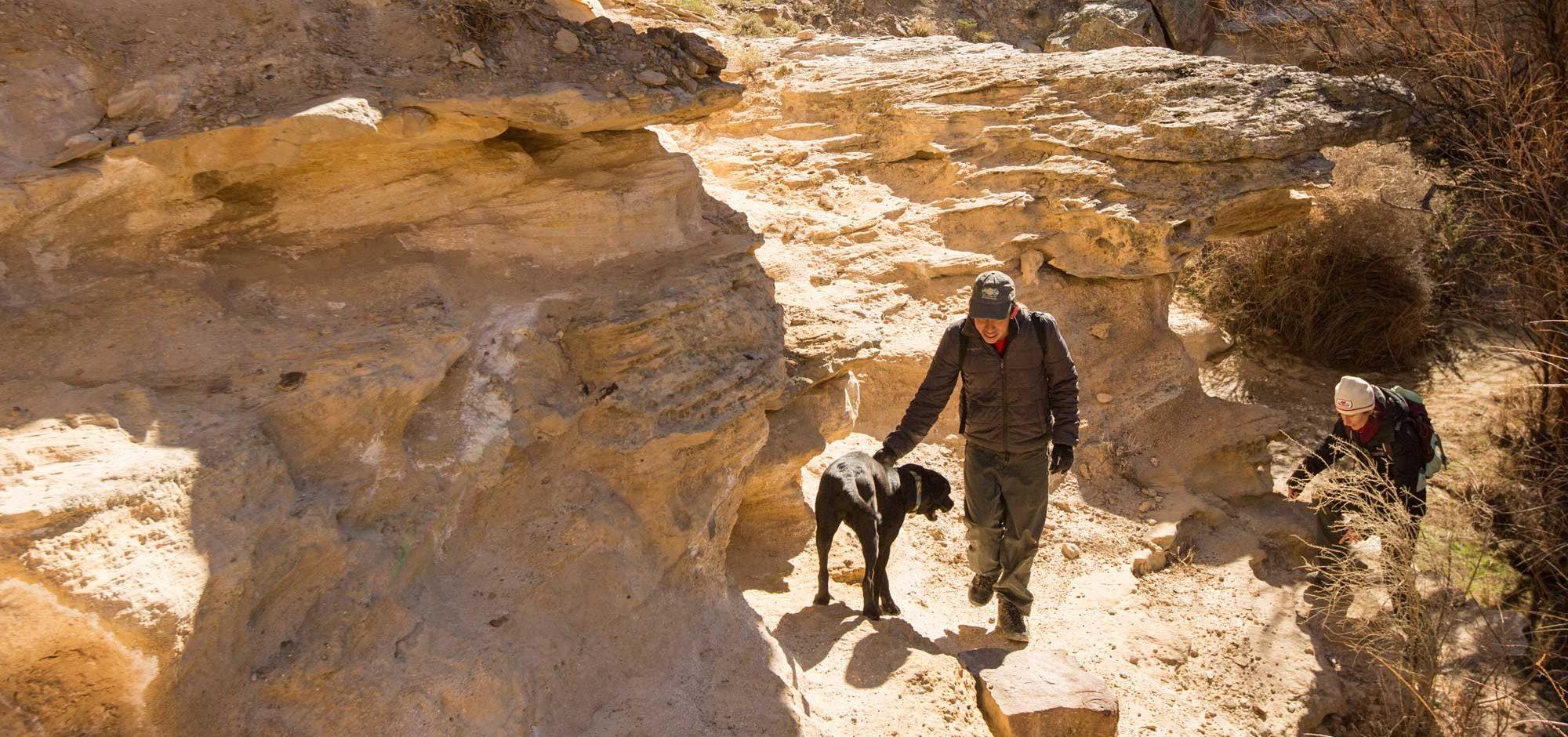 Eagle-Rock-Shelter-1225RBLWeb-3-1-1-2-e1557073217953